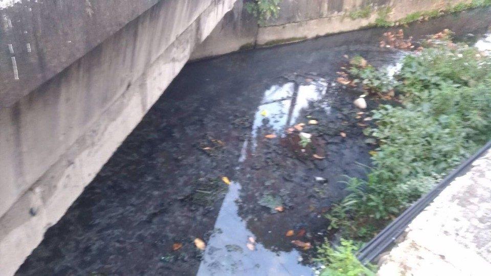 中市稽查南區河川汙染 初驗水質正常無重金屬反應。(記者白信東翻攝)