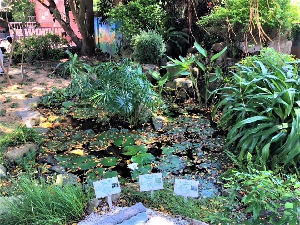 花園城市計畫增添校園風采 烏日溪尾國小打造新綠地。(記者廖怡婷翻攝)
