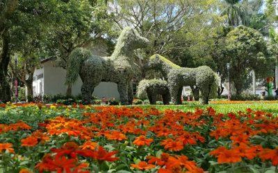 阿拉伯皇家寶馬綠雕。(記者廖怡婷翻攝)
