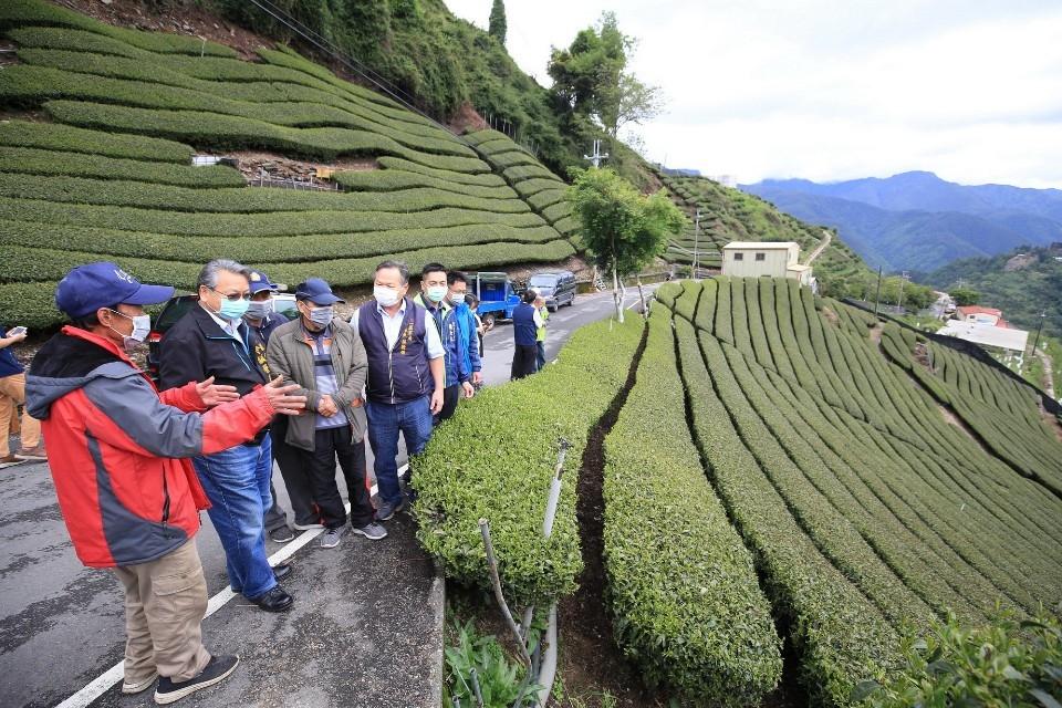 令狐副市長、農業局蔡局長等人視察茶園災損。(記者張越安 翻攝)