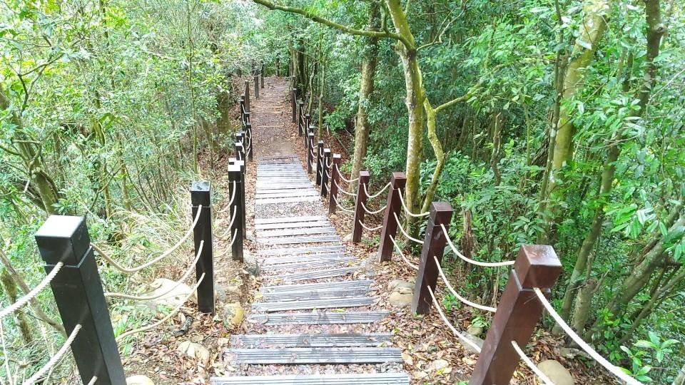 大坑5號步道-原木階梯及欄杆 (施工後)。(記者白信東翻攝)