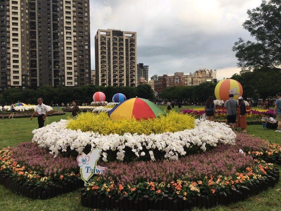 台中再添打卡熱點 同心圓花卉裝置藝術現蹤市民廣場。(記者張越安翻攝)