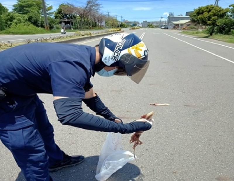 這路障真的有青!湖內警排除「魷」物守護行車安全。(記者劉明吉翻攝)